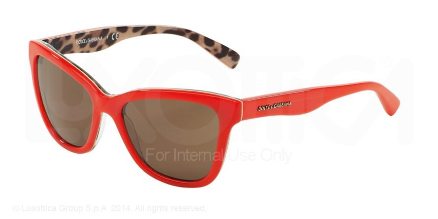 Dolce Gabbana 4237/31278g F0As2E9amV